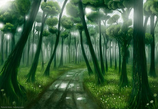 Deep forest by Roberto Nieto