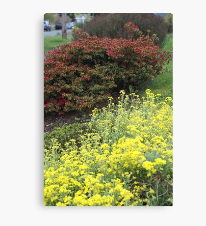 Crown Hill Gardens Canvas Print
