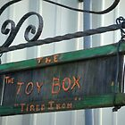 Dad's Toy Box by Christi Doolittle