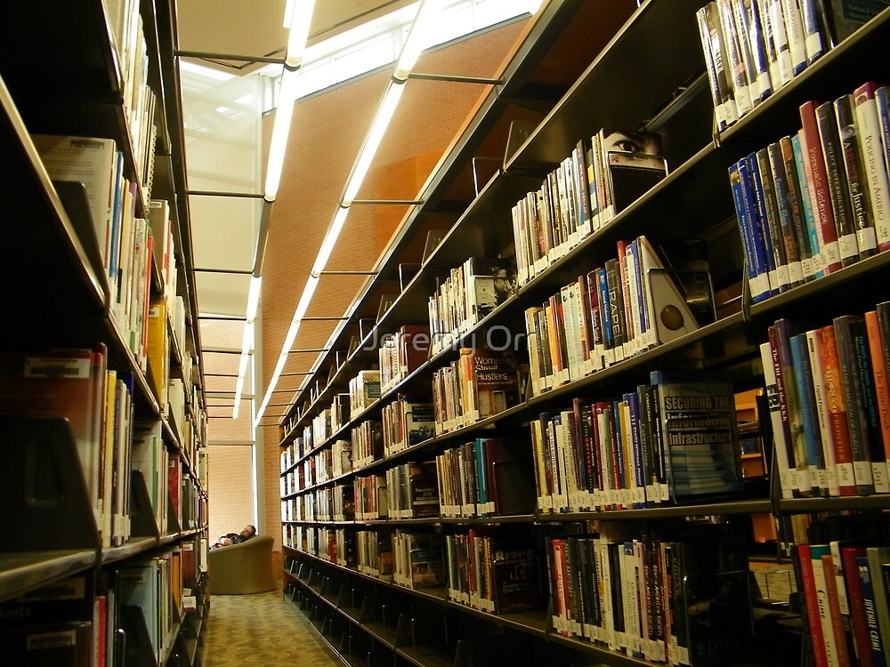 What are libraries for? by Jeremy Orr
