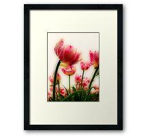 Pink Tulips for Mom Framed Print