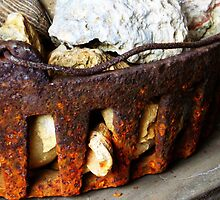 Rusted Iron Fossil Collection by Christi Doolittle