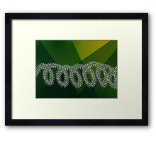Barbed wire and nature Framed Print
