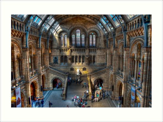 The Natural History Museum: London. by DonDavisUK