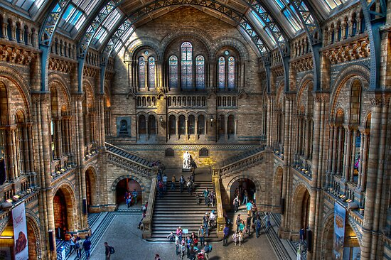 The Natural History Museum: London. by DonDavisUK