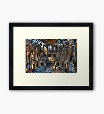 The Natural History Museum: London. Framed Print