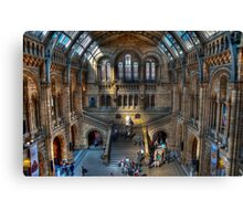 The Natural History Museum: London. Canvas Print