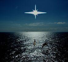 Orcas trait. by albutross