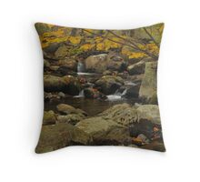 Smokey Mountains Waterfall Throw Pillow