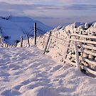 Winter on The Helm - Cumbria by Dave Lawrance