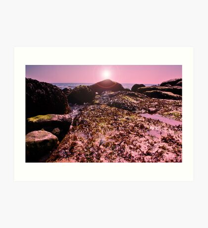 seaweed on the Rocks! Art Print