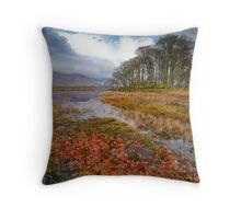 Autumn leaves, Loch Awe Throw Pillow