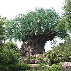Tree of Life - Walt Disney World by searchlight