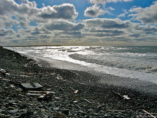 Salmon River Beach IV by David Davies
