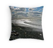 Salmon River Beach IV Throw Pillow