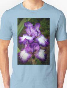 Purple And White Iris T-Shirt