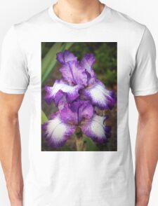 Purple And White Iris Unisex T-Shirt