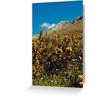 A favourite mountain to climb, Agia Pelagia Greeting Card