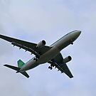 Aer Lingus by Lee d'Entremont