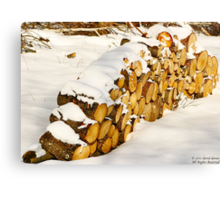 Memories Are Made of This Canvas Print