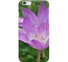 Illustrated Autumn Crocus iPhone Case/Skin
