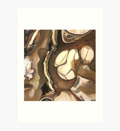 "Cochlea ""Cross Section""  Art Print"
