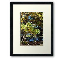 Autumn Jubilee Framed Print