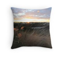The Lookout- Newington, Sydney Olympic Park Throw Pillow