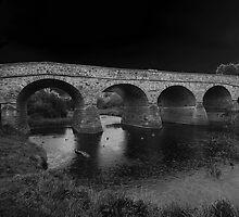 Richmond Bridge II by Ian Colley