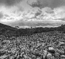 Half Way up Mt Wellington by Ian Colley