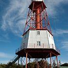 0862 Kingston Lighthouse by DavidsArt