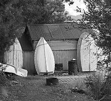 Dover Boat Shed by Ian Colley