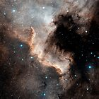 North America Nebula by StocktrekImages