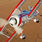 A Pitts Model 12 biplane. by StocktrekImages