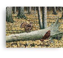 Ruffed Grouse, Male and Female Canvas Print