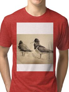 Pair of Pied Oystercatchers, Shoalhaven, NSW Tri-blend T-Shirt