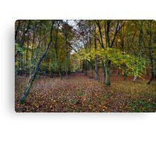 Autumn woodland avenue, Penn Canvas Print