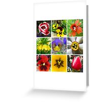 Spring Flower Collection  Greeting Card