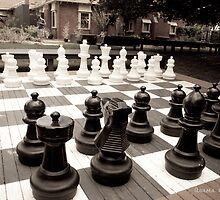 [Life] Anyone for chess? by AuroraPhoto