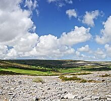 The Burren by Stephen Maxwell