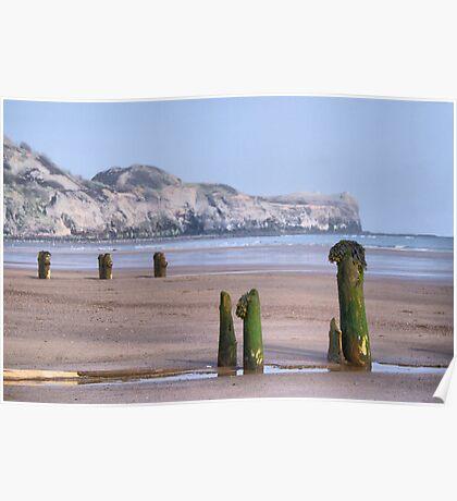 Old Groynes at Sandsend Beach Poster