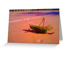 Grasshopper Looks Like a Jewel Greeting Card