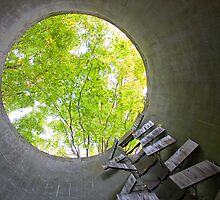 Portal by Jon Matthies