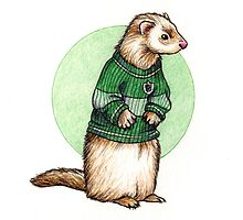 Little Slytherin Ferret Draco Malfoy by susannesart