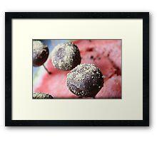 Delicate Dessert Framed Print