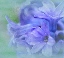 Hyacinths of Spring by Elaine  Manley