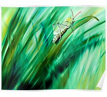 Cri Cri - oil painting of a cricket in the grass Poster