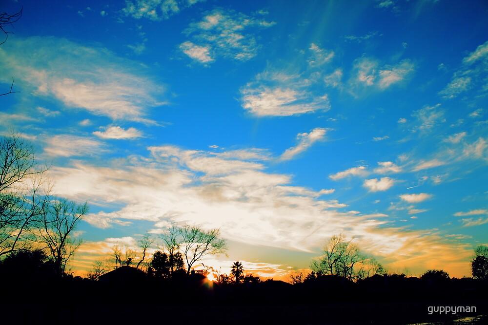 Suburban Sunset by guppyman