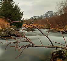 By the spring river by Frank Olsen