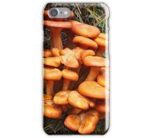 Jack O' Lantern II iPhone Case/Skin